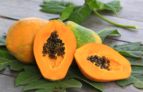 Papaya leaves – Surprising Health benefits – Papaya leaf tea
