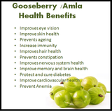 Indian gooseberry / Amla Tea, The anti ageing fruit tea, 40 Teabags, 80g