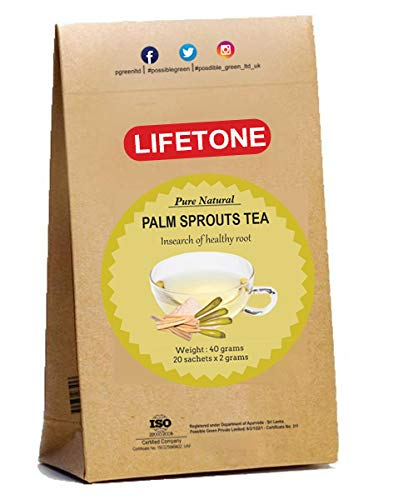 Palm Sprout Tea |Herbal Root Tea|20 Teabags |Source of Protein | Kick Start The Body | 20 Teabags