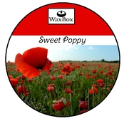 WaxBox wax melt - Sweet Poppy