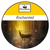 WaxBox wax melt - Enchanted
