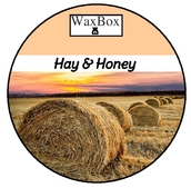 WaxBox wax melt - Hay & Honey