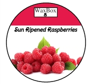 Sun ripened Raspberries