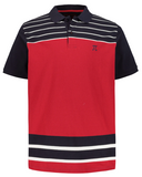 polo shirt, front stripes, polo collar