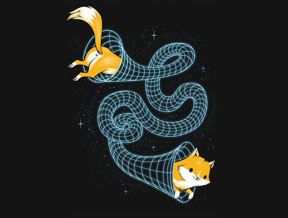 Wormhole Cat