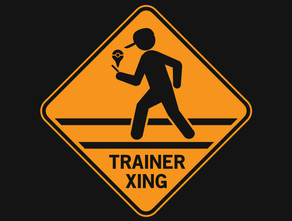 Trainer Xing