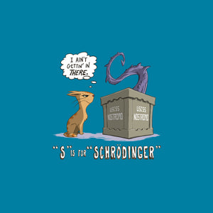S is for Schrodinger