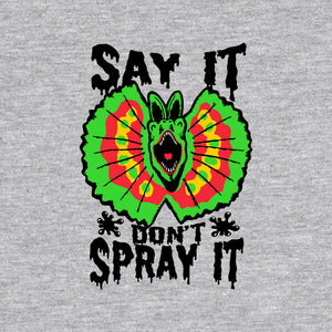 Say It Don't Spray It