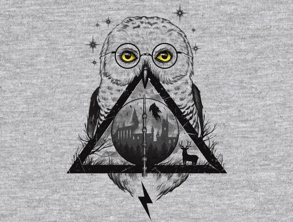 Owls and Wizardry
