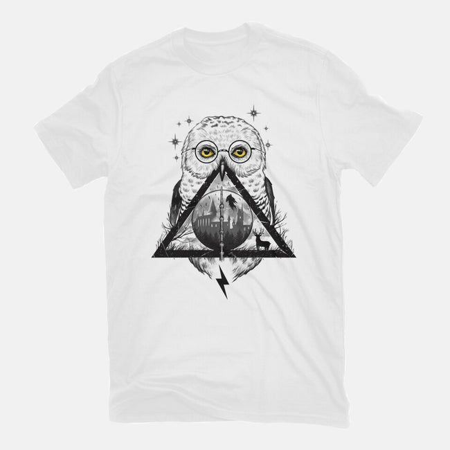 Owls and Wizardry-mens basic tee-vp021