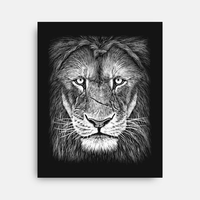 Lion-none stretched canvas-pirrokoci