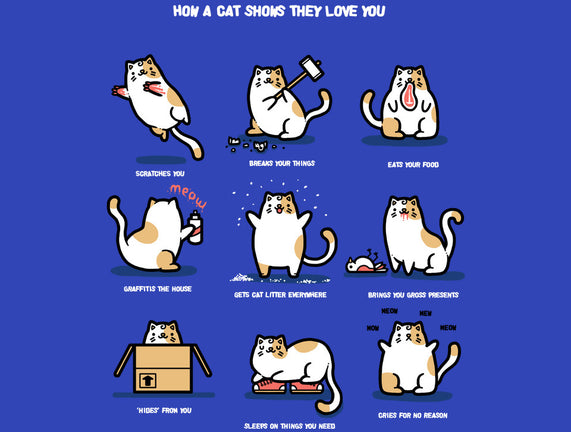 How A Cat Loves