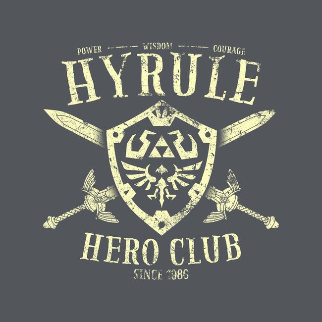 Hyrule Hero Club-none matte poster-alecxpstees