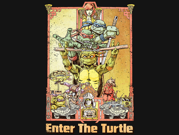 Enter the Turtle