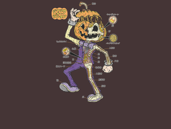 Pumpkin's Anatomy