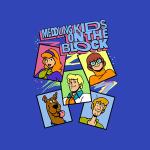 Meddling Kids On The Block