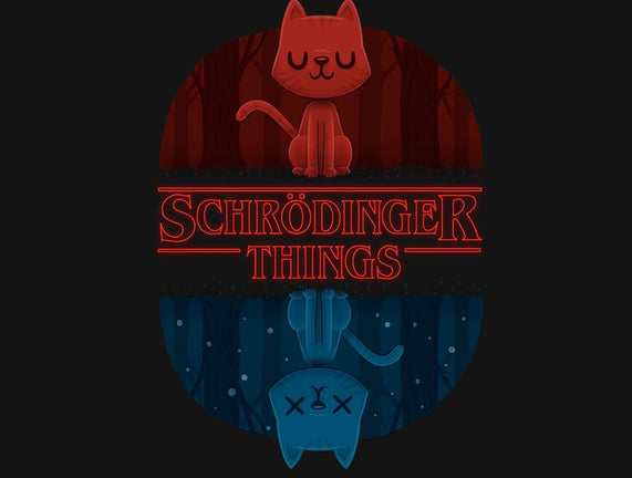 Schrodinger Things