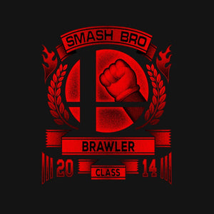 Smash Bros Brawler