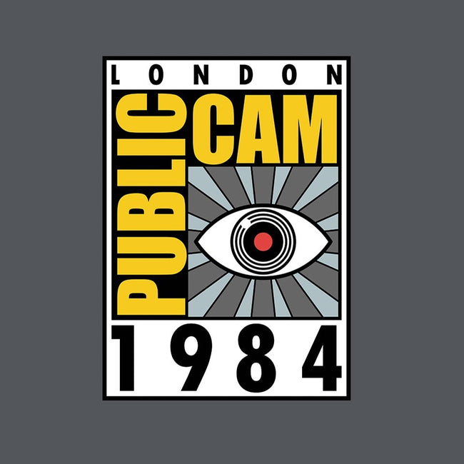 Public Cam-womens basic tee-karlangas