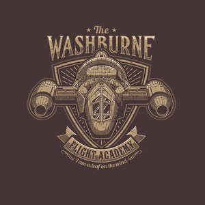 Washburne Flight Academy