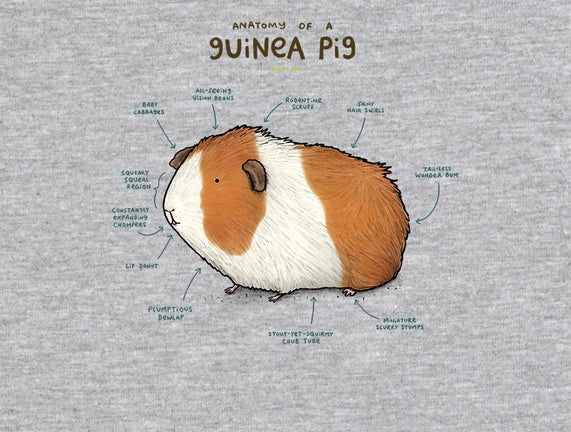 Anatomy of a Guinea Pig