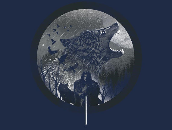 The King of The North