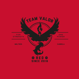 Go Team Valor!