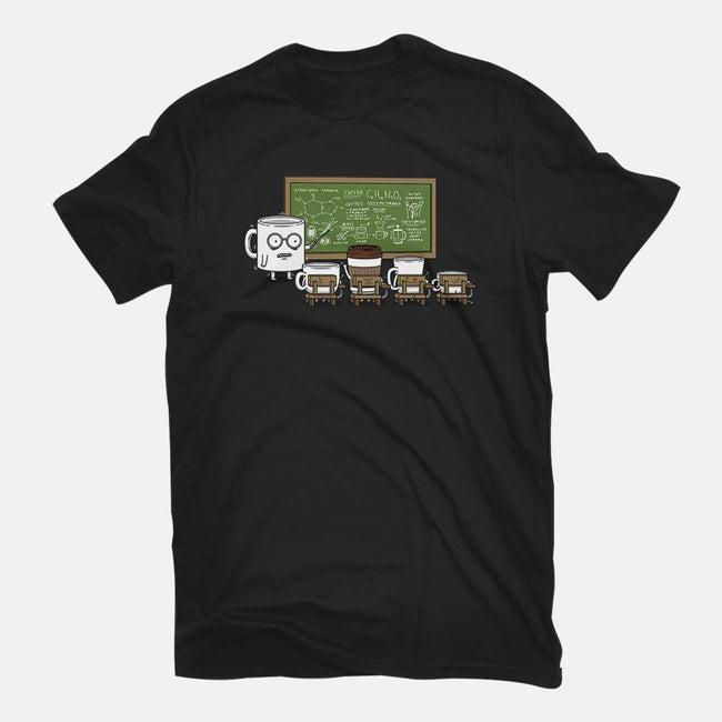 Coffee Lessons-womens fitted tee-pigboom