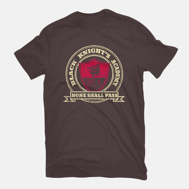 Knight's Academy-womens fitted tee-piercek26