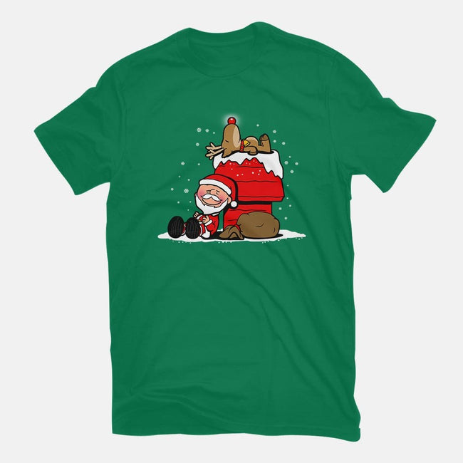 Christmas Nuts-womens fitted tee-Boggs Nicolas
