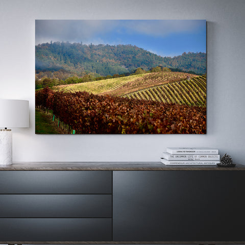 Canvas Wall Decor Abacela Vineyards 4 Sizes To Choose From-And He Cooks