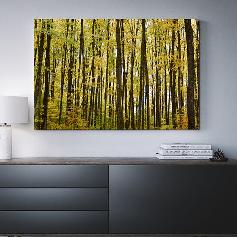 Canvas Wall Art Of Trees 4 Sizes To Choose From-And He Cooks