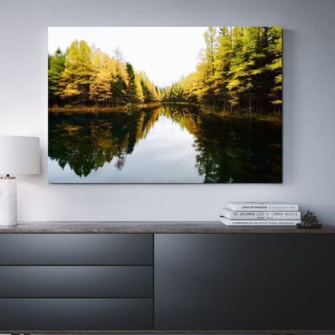 Canvas Wall Art Of River and Trees 4 Sizes To Choose From-And He Cooks