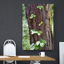Canvas Wall Art Leaves 4 Sizes To Choose From-And He Cooks