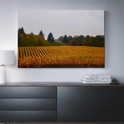 Canvas Wall Art Vineyard Landscape 4 Sizes To Choose From-And He Cooks