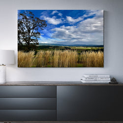 Canvas Wall Art Penner-Ash Vineyards 4 Sizes To Choose From-And He Cooks
