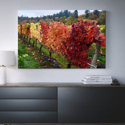 Canvas Wall Art Of Fall Colors 4 Sizes To Choose From-And He Cooks