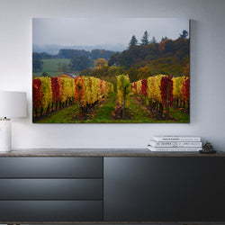Canvas Wall Art Autumn Vineyard 4 Sizes To Choose From-And He Cooks
