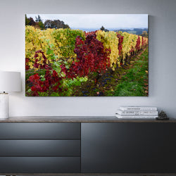 Canvas Wall Art Vine Row 4 Sizes To Choose From-And He Cooks