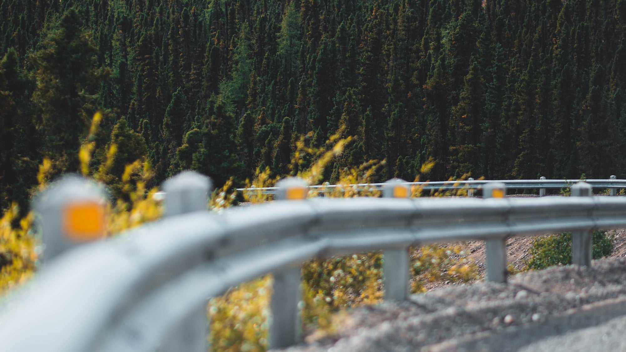 3 Guardrails That Will Change Your Life