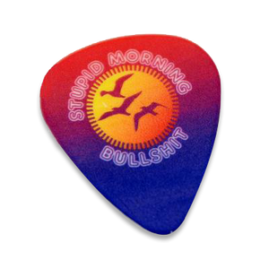 SMB Guitar Picks