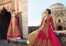 Load image into Gallery viewer, Indian Pakistani Designer Salwar Kameez Original Glossy 12003