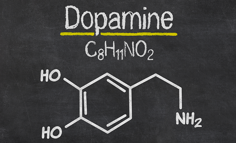 Dopamine Effects With Nootropics