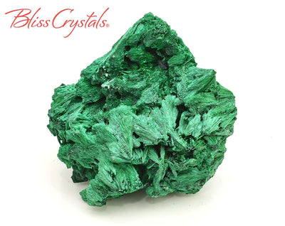 111 gm Fibrous MALACHITE Raw Specimen + Stand, for Display & Protection #FM09