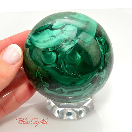 1 lb MALACHITE Polished Sphere + Stand 70 mm Collector Quality Display Crystal #MS27