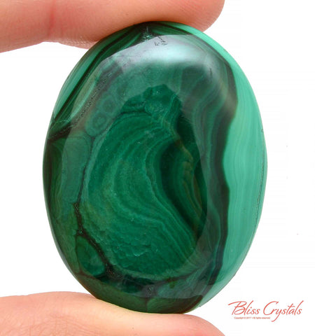 MALACHITE Cabochon 1.6 inch Polished Crystal Palm Worry Stone Jewelry Crafting Healing Crystals and Stones #MC42