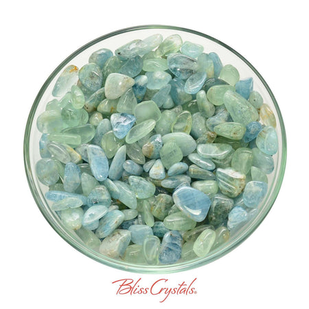 20 gm Parcel AQUAMARINE Small Tumbled Chips Mixed Blue Green Natural #AM23