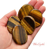 1 Gold Tiger's Eye Flat Palm Stone Large for Motivation Courage #GT12