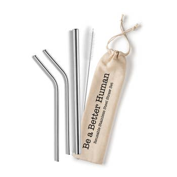 Stainless Steel Straw Set - Be A Better Human
