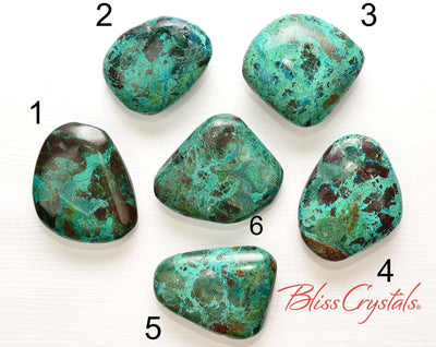 1 XL CHRYSOCOLLA Palm Stone + Bag for Women's Spirituality Divine Feminine #CR38